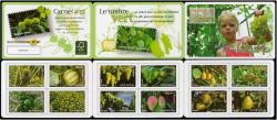 2012-04-04-carnet-des-fruits-pour-une-lettre-verte.jpg